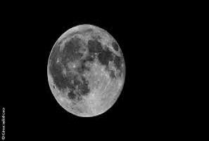 La Pleine Lune du 11 Février 2017 en Lion pour votre signe astrologique